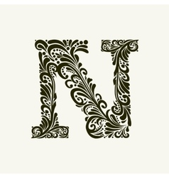 Elegant capital letter N in the style Baroque vector image vector image
