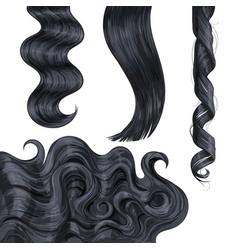 Shiny long black fair straight and wavy hair vector