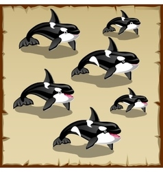 Set of cute killer whales six icons vector