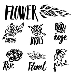 Flower set 4 vector