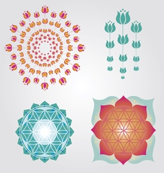 Floral icons designs vector image