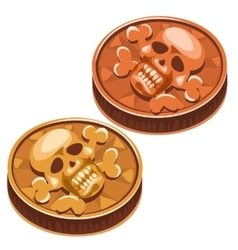 Old pirate coin with skull and crossbones vector