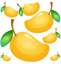 seamless background with fresh mango vector image vector image