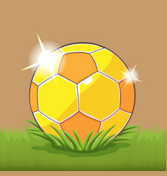 Soccer gold ball field grass vector