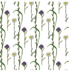 Watercolor seamless pattern with wild flowers vector