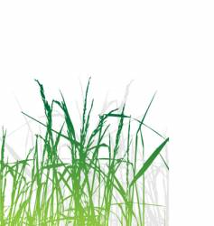 Grass silhouette green summer background vector