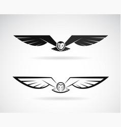 owl design on a white background bird vector image