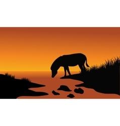 Silhouette of one zebra in riverbank vector