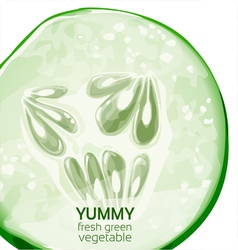 Yummy fresh green vegetable poster vector image vector image