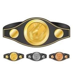 three champion belts vector image vector image