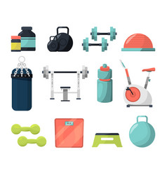 different equipment for gym weight gymnastic vector image vector image
