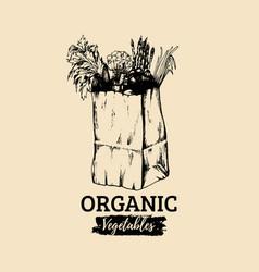 organic vegetables poster logotype farm vector image