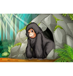 Chimpanzee standing in front of the cave vector