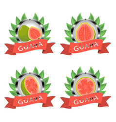 For ripe fruit green guava vector