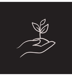 Hands holding seedling in soil sketch icon vector image vector image