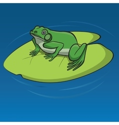 Frog sitting on the leaf vector