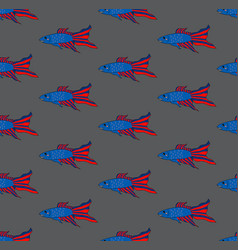 Colorful siamese fighting fish on gray brown vector