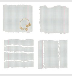 Scraps of pages of a school notebook in a cage vector