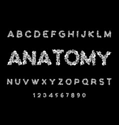 Anatomy font skeleton abc letters bones skull and vector