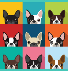 Boston terrier pattern converted vector