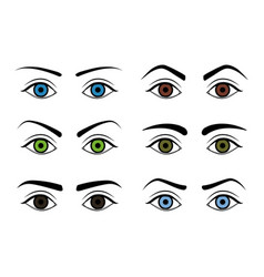 different type woman eyebrows set vector image vector image