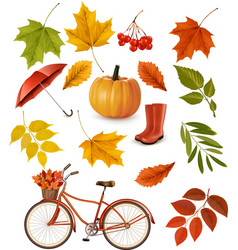 Set of colorful autumn leaves and objects vector image