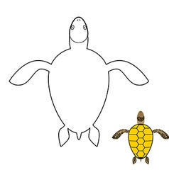 Turtle coloring book marine reptiles vector