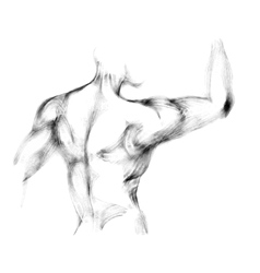 Sketch of athletic man back vector