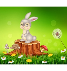 Cute bunny sitting on tree stump vector