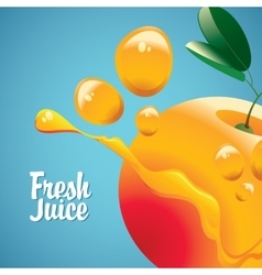 Orange fruit and fresh juice splash vector