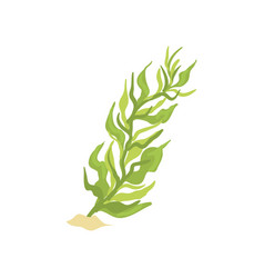 green seaweed in cartoon flat vector image
