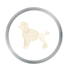 Poodle icon in cartoon style for web vector image vector image