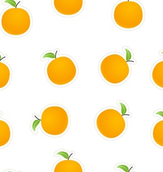 Oranges on white vector