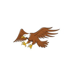 American bald eagle swooping cartoon vector