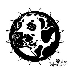 Graphic drawing of a dog head dalmatian vector