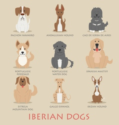 Set of iberian dogs vector