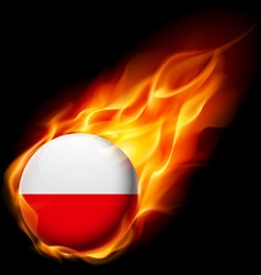 Round glossy icon of poland vector