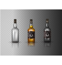 Glass brandy bottle with screw cap isolated on vector