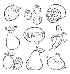 fruit hand draw various doodle vector image vector image