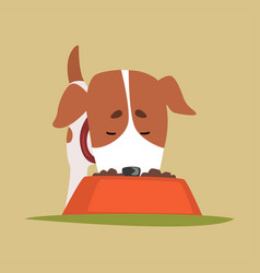 Jack russell puppy character eating dog food cute vector