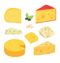 Delicious fresh sliced cheese variety icon cheese vector