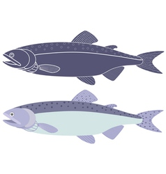 Humpback salmon vector