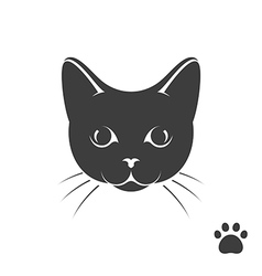 Black kitten with paw print vector image