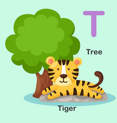 isolated animal alphabet letter t-tree tiger vector image vector image