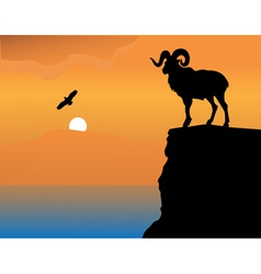 Mountain goat on a rock vector