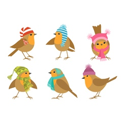 Winter Robins vector image vector image