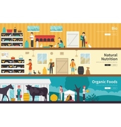 Bio natural nutrition organic foods flat interior vector