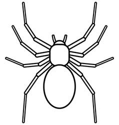 Spider on white vector