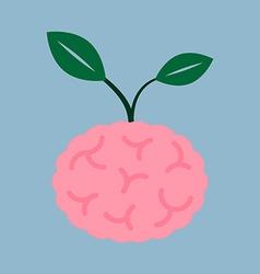 Brain seed plant vector