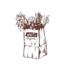 organic vegetables poster logotype farm vector image vector image